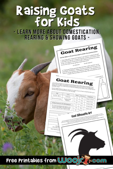 Raising Goats for Kids – Mini Lesson and Activities