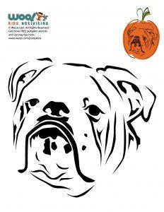 English Bulldog Printable Halloween Pumpkin Stencil