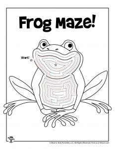 Frog Animal Coloring Maze - ANSWER KEY