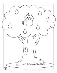 Partridge in a Pear Tree Coloring Sheet