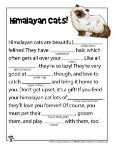 Himalayan Cats Ad Libs Word Games for Kids
