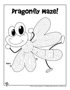 Cute Dragonfly Maze for Kids