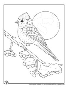 Cardinal Winter Adult Coloring Page to Print