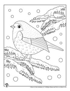 Winter Snow Bird Coloring Page for Adults