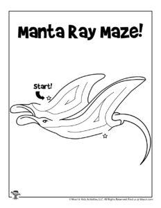 Manta Ray Ocean Maze Puzzle