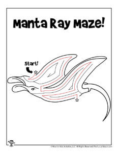 Manta Ray Ocean Activity Worksheet - ANSWER KEY