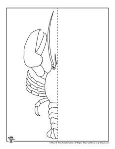 Lobster Ocean Symmetry Drawing Activity