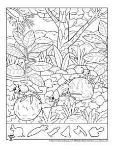 Bug Family Hidden Picture Activity Page